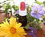 Homeopatie na každý den