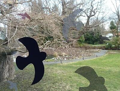 Ptačí siluety na sklo