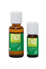 Silice Eukalyptus (10 ml) Y&B